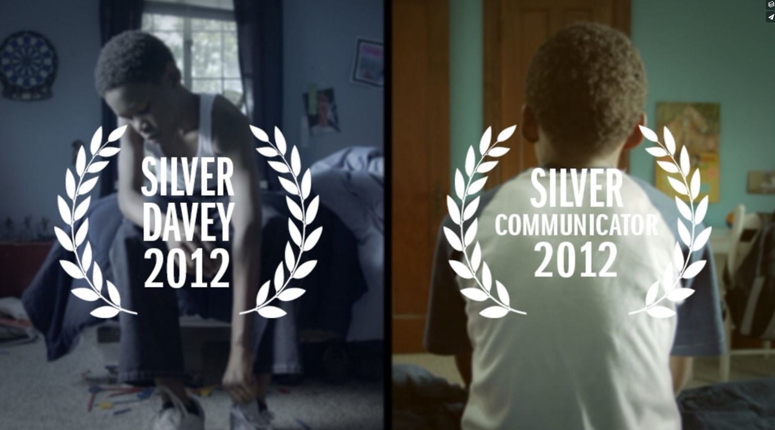 Silver Davey 2012 and Silver Communicator 2012 awards